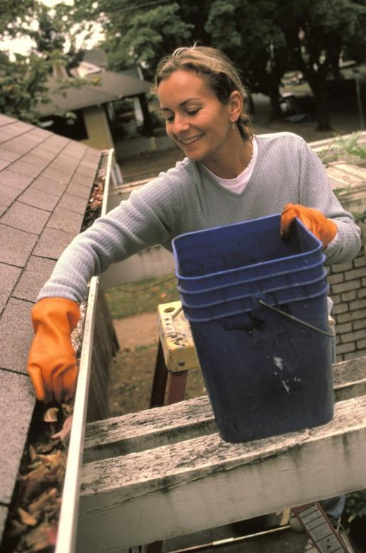 siae jardinage aide jardinier domicile entretien espace vert nettoyage actem. Black Bedroom Furniture Sets. Home Design Ideas